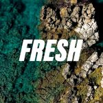 Corporate Rhythmic Fresh Upbeat